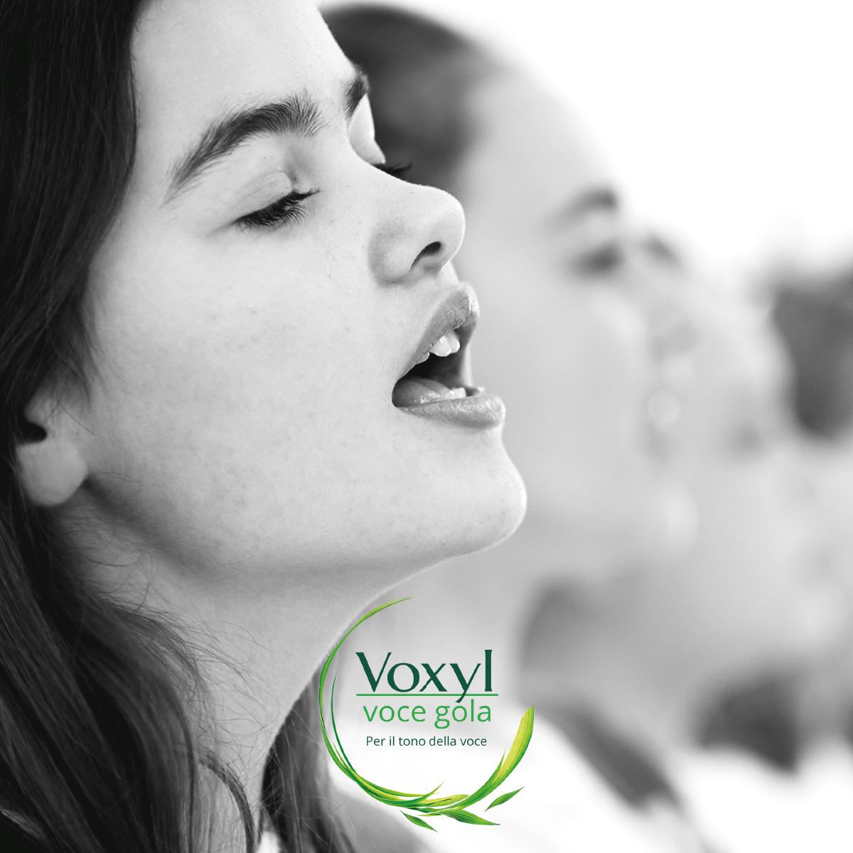 Voxyl Facebook