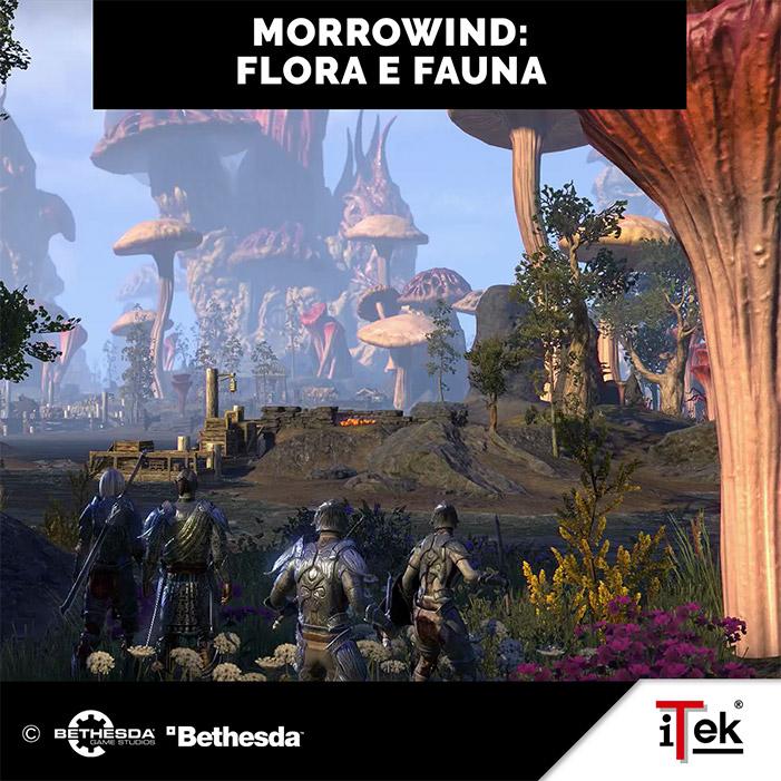 Itek Morrowind