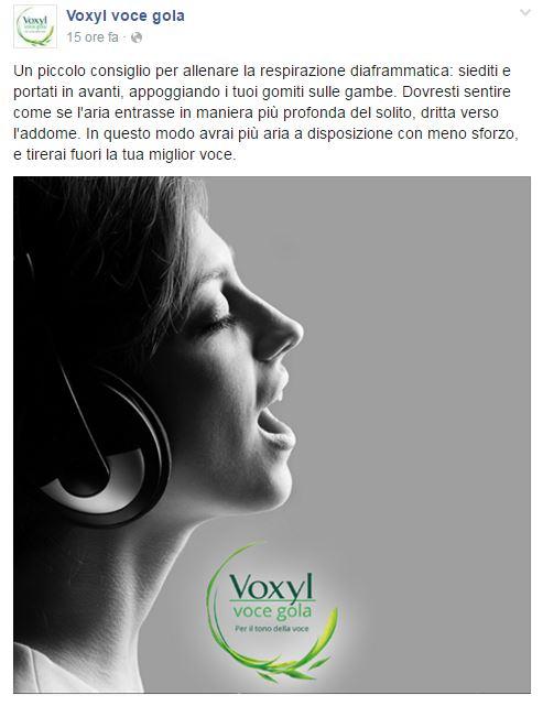 Voxyl Facebook 1